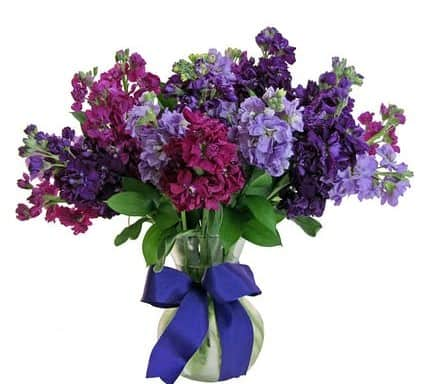 This vase of beautiful flowers features various colors of stock. Sure to brighten someone's day!